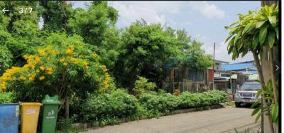 ที่ดิน 4000 กรุงเทพมหานคร เขตคันนายาว คันนายาว
